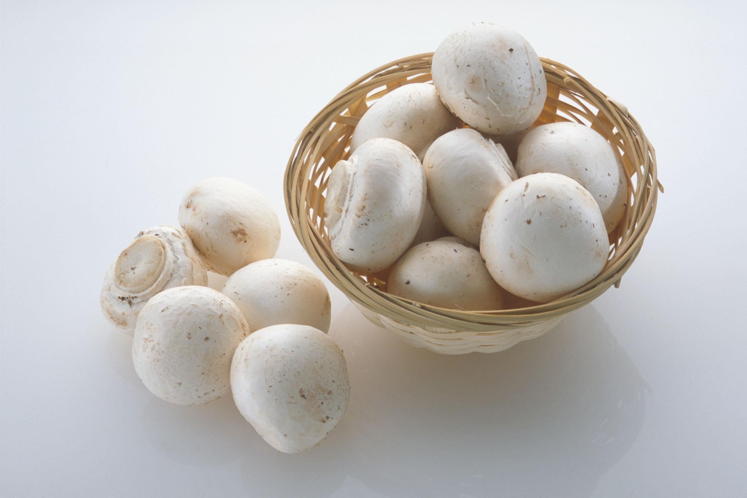 روشهای نگهداری و سفید نگه داشتن قارچ