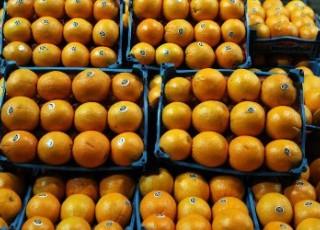احتمال افزایش نرخ پرتقال شب عید به 7 هزار تومان