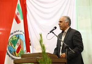 پایان نهال کاری محدوده شهرستانهای اصفهان و برخوار