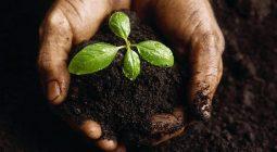 تشکیل ۱۱۸ پرونده تخلف برداشت خاک در شهرستان برخوار