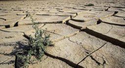 سالانه یک متر از سطح آبهای زیرزمینی دشت اصفهانوبرخوار کاهش مییابد