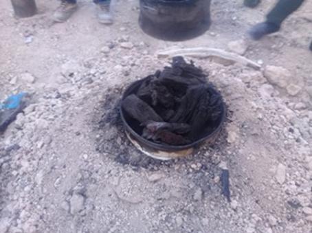 کشف حدود یک تن و 300کیلوگرم ذغال و چوب تاغ در برخوار
