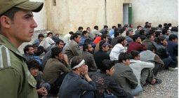 فرماندار برخوار: براساس مقررات بین الملل و با اخلاق اسلامی با مهاجران خارجی برخورد می کنیم