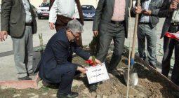 مراسم درختکاری در آموزشگاه بنیاد برکت روستای محسن آباد برخوار/تصاویر