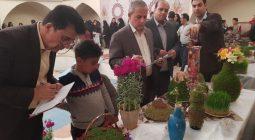 جشنواره غذاهای سنتی و سبزه آرایی عید نوروز در شهر شاپوراباد /تصاویر