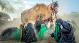 عکاس دولت آبادی، بهترین عکاس جشنواره عکس جهانی اربعین شد