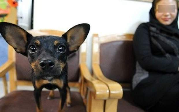 خرج عمل سگم از یک انسان بیشتر شد!