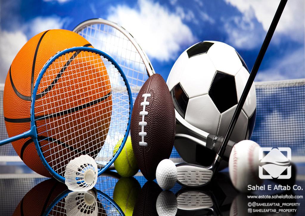 حمایت از ورزش، وظیفه ذاتی اداره ورزش است/ دوره پنجم شورا، طلایه دار حمایت از ورزش بوده است