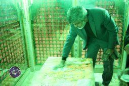 مراسم غبار روبی امامزاده نرمی به روایت تصویر