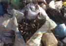 ۱۸ تن موادمخدر صنعتی در برخوار به آتش کشیده شد |تصاویر